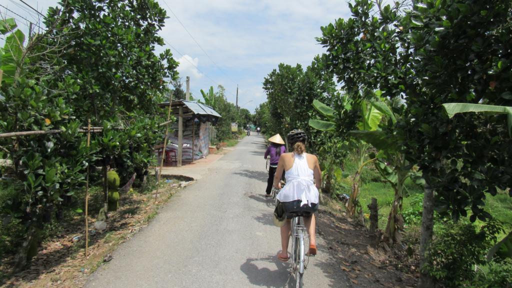 Andando de bicicleta em meio aos arrozais e fazendas de frutas tropicais, dos pequenos agricultores da região do Delta do Mekong, no Sul do Vietnã. Passeio incrível, ótima opção de o que fazer em Saigon (HCMC). Dicas e roteiro de viagem. Biking among rice fields in Mekong Delta, south of Vietnam.