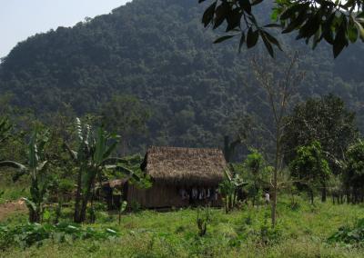 phong-nha-vila-village-vietna