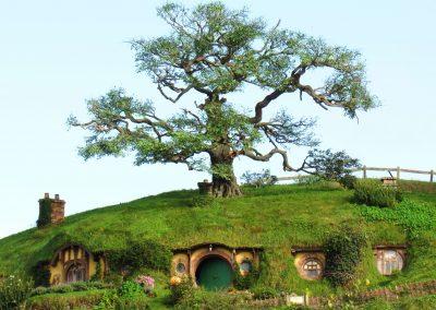 hobbiton6