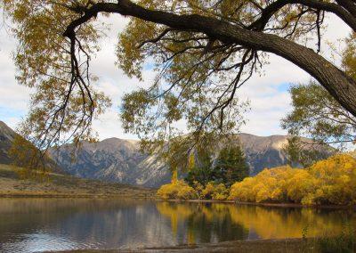 lake-pearson
