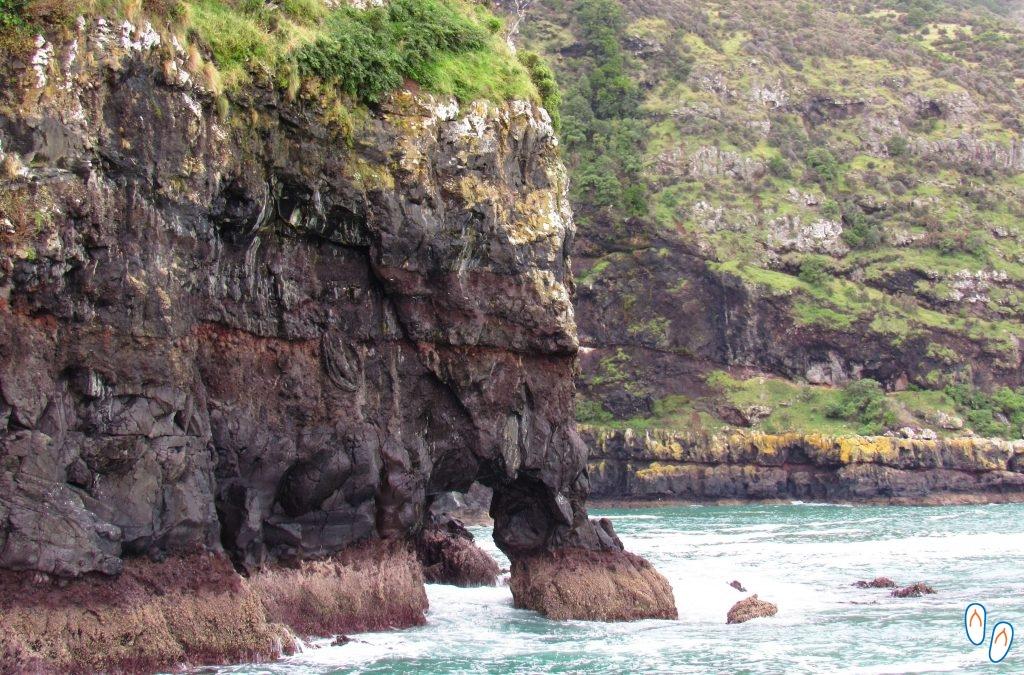 Elefante de Pedra em Akaroa, NZ