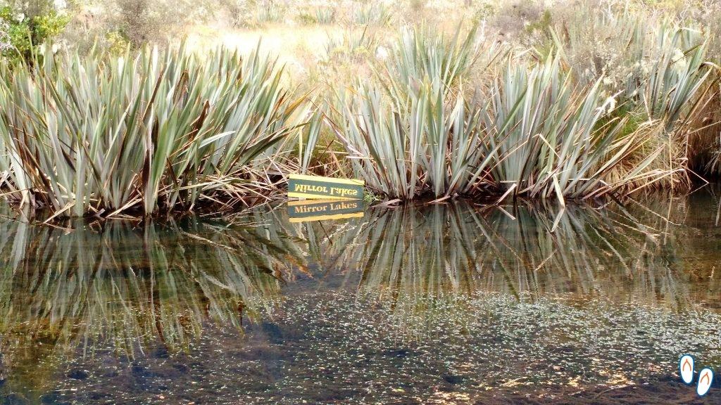 Mirror Lakes, estrada para Milford Sound, Fiordland National Park
