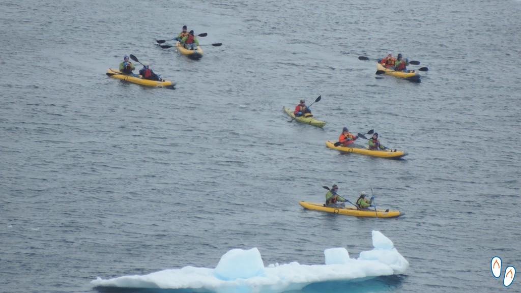 Paddling na Antártida