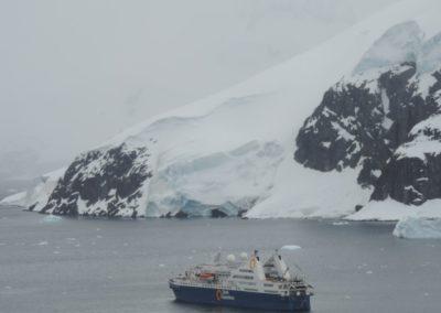 antartida-paradise-harbour