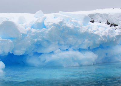 icebergs-na-antartida-pleneau-bay