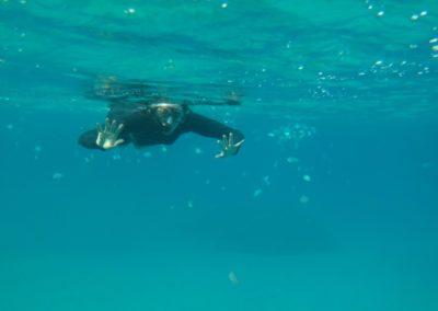 snorkel-em-noronha
