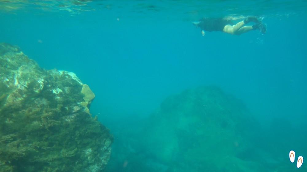 Mergulho livre em Noronha