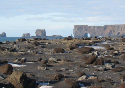 praia-de-areia-negra-islandia