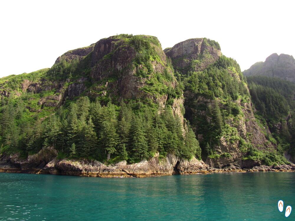 WIldlife Cruise, em Seward, Alasca